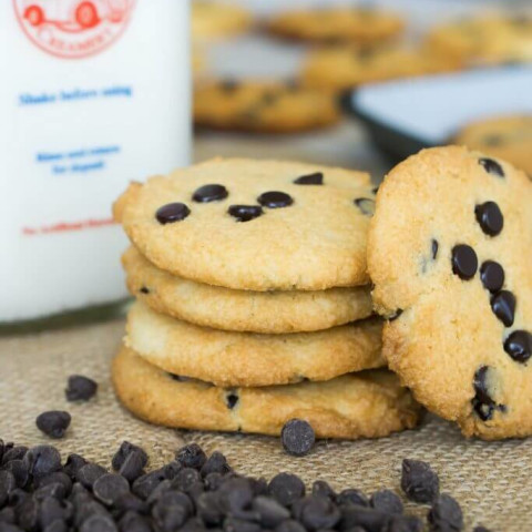 Almond Flour Chocolate Chip Cookies | Chewy!