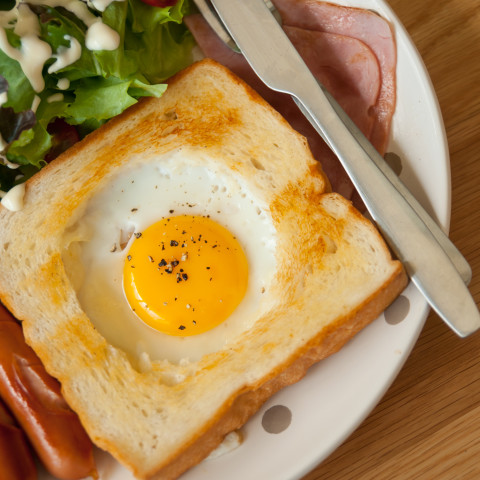 Birds nest eggs and toast forumfinder Image collections