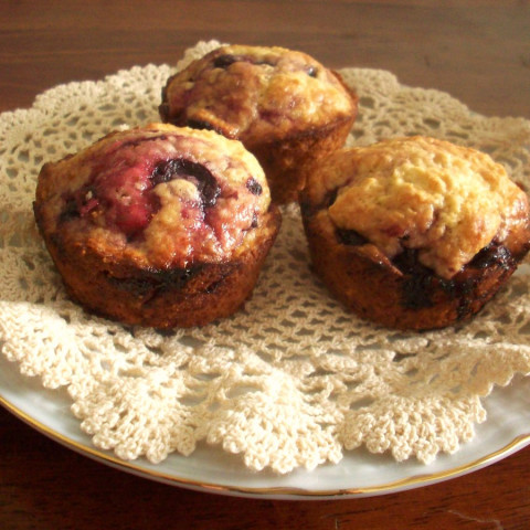 Blueberry Cup Cakes