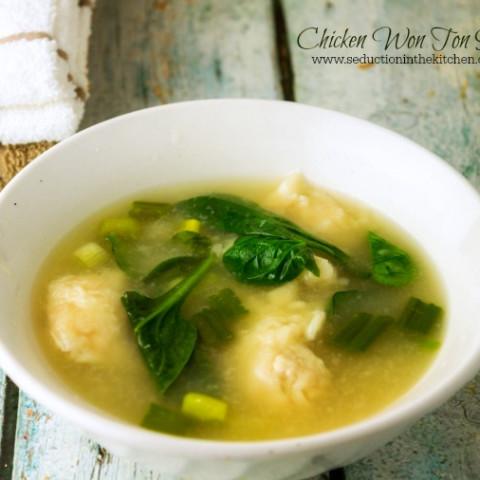 Chicken Won Ton Soup