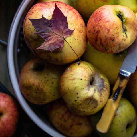Fall Paleo Apple-Carrot Bread Recipe
