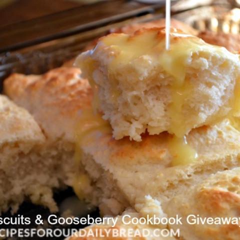 Fizzle Biscuits-Cookbook-Giveaway ENDS 12/13/13