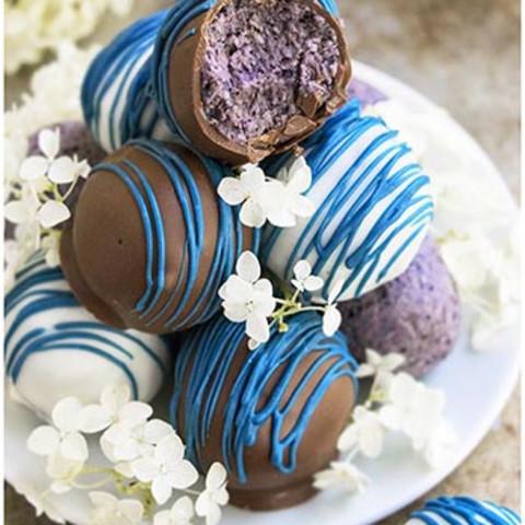 Healthy Chocolate Blueberry Truffles
