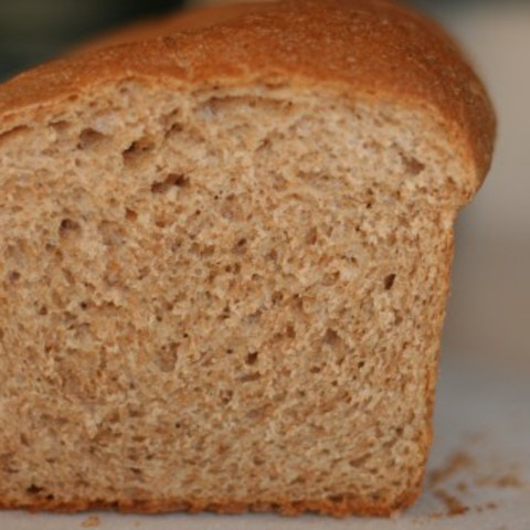 Jenny's Whole Wheat Bread