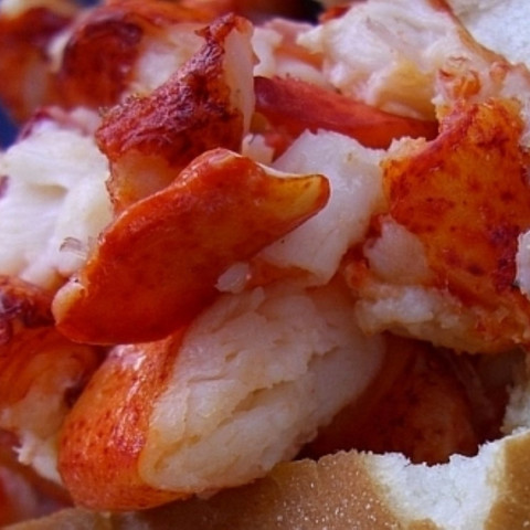 Lobster Rolls with Homemade Mayonnaise