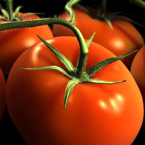 Mozzarella-Stuffed Tomatoes