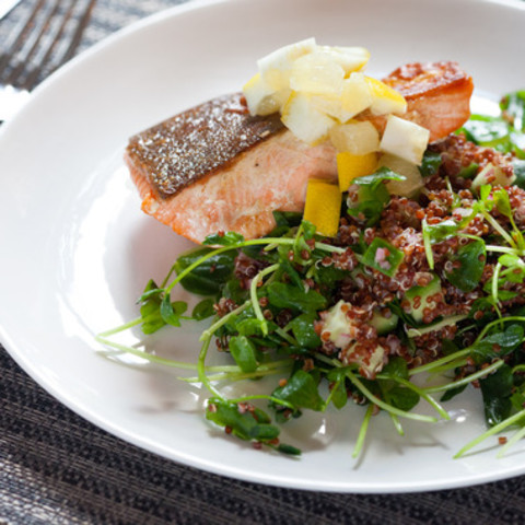 Seared Salmon and Preserved Lemonwith Red Quinoa and Pea Shoots