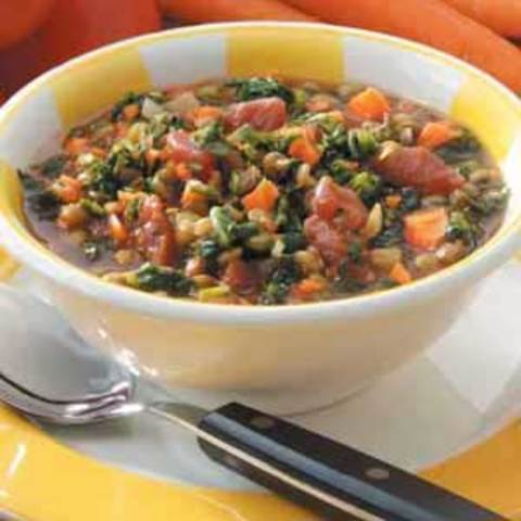 Spinach Lentil Stew Recipe