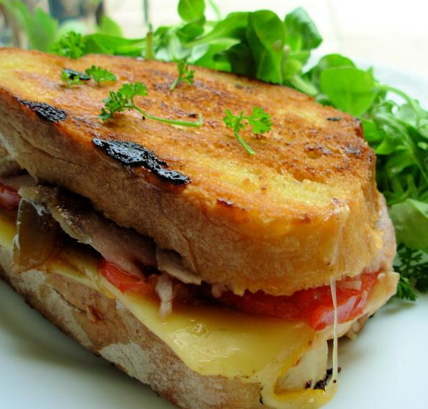 grilled roasted turkey and provolone sandwich