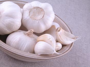 الاكلات التى تضر بصحةة القطط وبعض الحيوانات الاخرى  Garlic