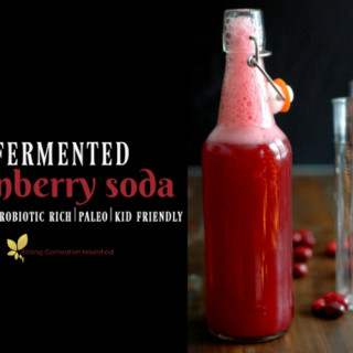 Fermented Cranberry Soda :: A naturally probiotic rich, kid friendly, real