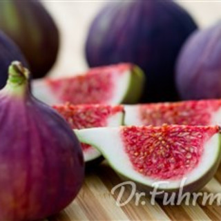 Fresh Fig and Arugula Salad with Walnut Vinaigrette