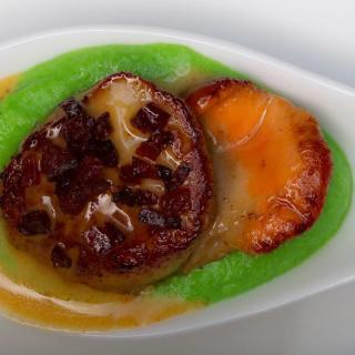 Seared scallops with chorizo cream sauce and pea puree