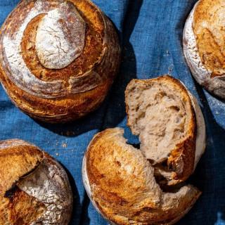 Sourdough Bread (Due Pane)