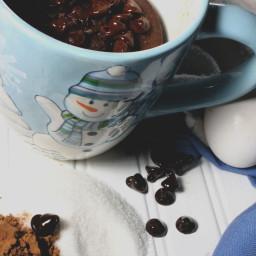 5-minute-chocolate-mug-cake-8.jpg