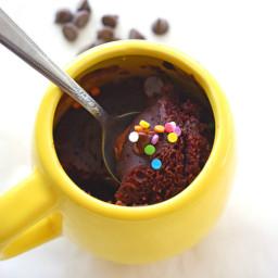 5 Minute Double Chocolate Microwave Cake