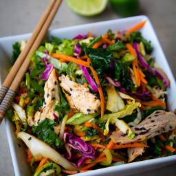 5 Min Spicy Asian Chicken Salad {Paleo Friendly}