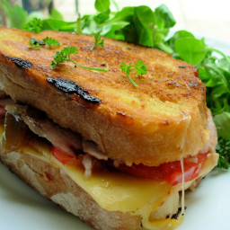 A Grilled Roasted Turkey and Provolone Sandwich