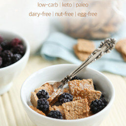 Allergy-Free Healthy Keto Cereal