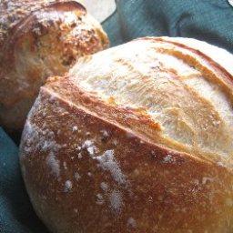 almost-no-knead-bread-3.jpg