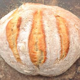 Artisan Bread | No Knead Bread |