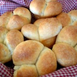 Aunt Judy's Oatmeal Rolls