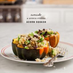 avocado and quinoa stuffed acorn squash