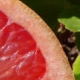 Baked Grapefruit recipe from the Chalet Suzanne