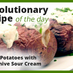 baked-potatoes-with-tofu-chive-sour-cream-1951821.jpg