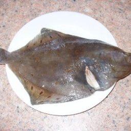 basic-fish-meuniere-5.jpg