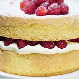 Basic sponge cake