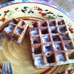 Belgian Buckwheat, Rye, Rice and Coconut Flour Waffles
