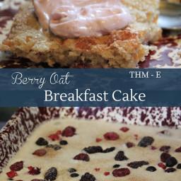 Berry Oat Cake