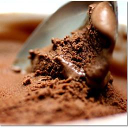 Best Chocolate Ice Cream