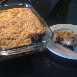 best-ever-blueberry-coffee-cake-5.jpg