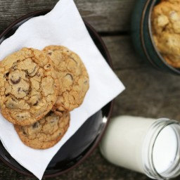 Best Gooey Chocolate Chip Cookies Ever