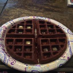 bisquick-chocolate-waffles-df2a93f23ef8fdf76ae8957e.jpg