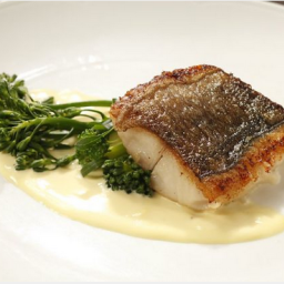Black Cod with Saffron Cream