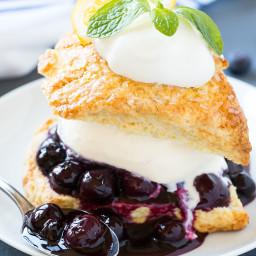 blueberry-shortcake-1549962.jpg