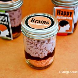 Brains in a Jar Cake Recipe