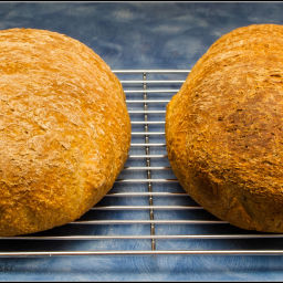 Bread, 100% Wholemeal, 24 hour, no knead
