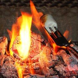 campfire-smores-4.jpg