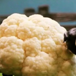 Cauliflower Sheep Recipe