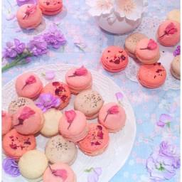 Cherry Blossom, Rose, Jasmine and Earl Grey Macarons