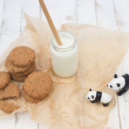 Chewy Maple Syrup and Coconut Biscuits