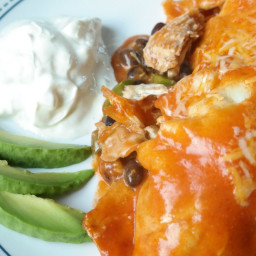 Chicken Enchilada with Homemade Sauce