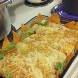 chicken-enchiladas-with-a-twist-7.jpg