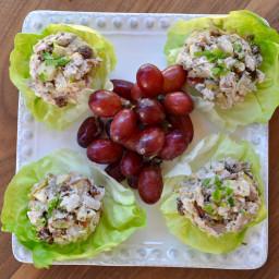 chicken-lettuce-boats-23135d-9aee10369e8c00603ff2093f.jpg