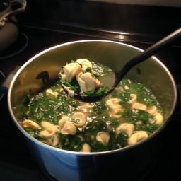 Chicken or Turkey Tortellini Soup