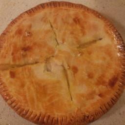 chicken-pot-pie-with-2-crusts-3.jpg